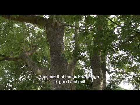 Paradise / Le Paradis (2014) - Trailer English Subs