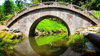 Música Relajante Japonesa y Sonido de Agua - Música de Relajación y Meditación: Música Oriental Zen
