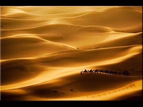 Desert Rose Sting Instrumental