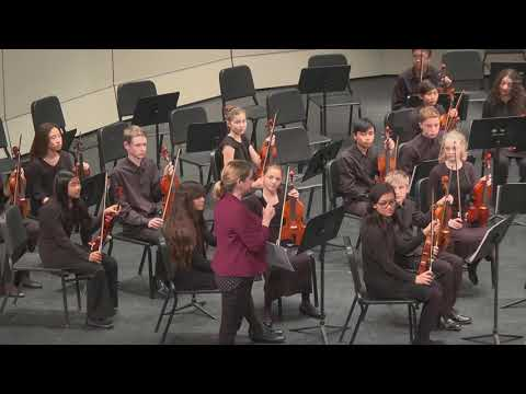 Ulli Reiner, PUSD Orchestra Festival, Twin Peaks Middle School 3/3/2019