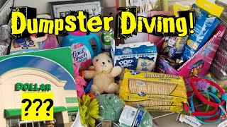 DUMPSTER DIVING! Dollar Store Haul Live Dive AND Reveal!