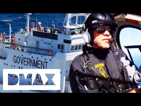 The Sea Shepherds Close In On Mysterious Government Ship | Whale Wars