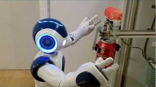 Integration of the Humanoid Robot Nao inside a Smart Home