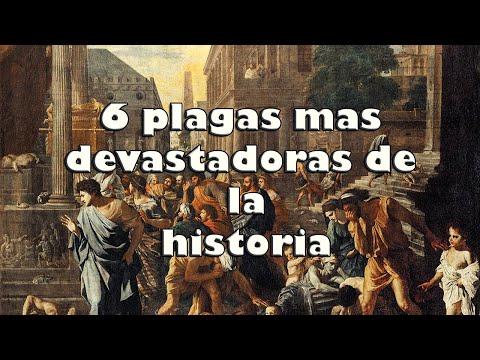 6 PLAGAS más DEVASTADORAS de la HISTORIA