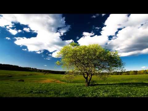 Carbon Based Lifeforms - Twentythree [Full Album HD]