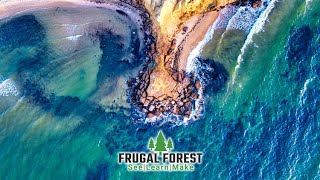 Welcome to Frugal Forest 🌲 | FREE online video and photo editing courses