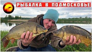 Ловля карпа и линя Рыбалка в Подмосковье