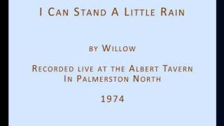 Willow-I can stand a little rain.wmv
