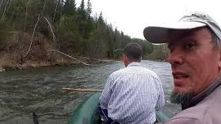 Сплав по реке Базаихе в мае