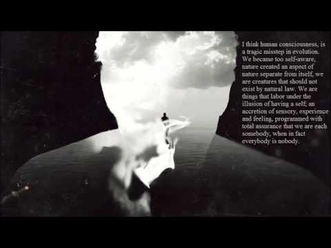 Lungs - Townes Van Zandt (True Detective) (lyrics)