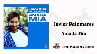 Javier Palomares - Amada Mia (Juan Martinez Remix Edit)
