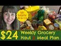 $24 Weekly Grocery Haul & Meal Plan- Tight Budgeting for Our Trip