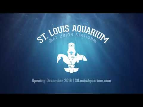 Maurice DeVoe - Christmas Day the St. Louis Aquarium at Union Station is set to open.