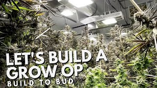 Let's Build a Grow Op The Movie! From Build to Bud!