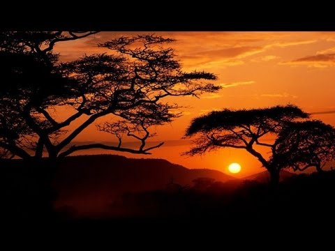 African Music Instrumental - Heart of Africa