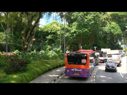 [Full Trip] SBS3155T on Service 7: Part 2 to Holland Road