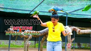 Travel with Wasuliya - වාසුළිය | Dry Zone Botanic Graden | Travel Magazine Thumbnail