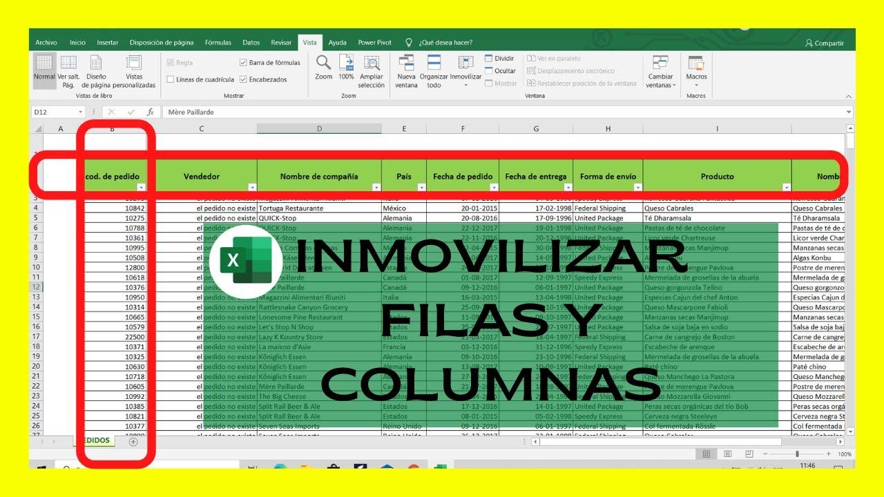 Como Inmovilizar Columnas Y Filas En Excel Al Mismo Tiempo Youtube