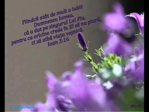 Marius de la Barbulesti-Cerul a plans 2013