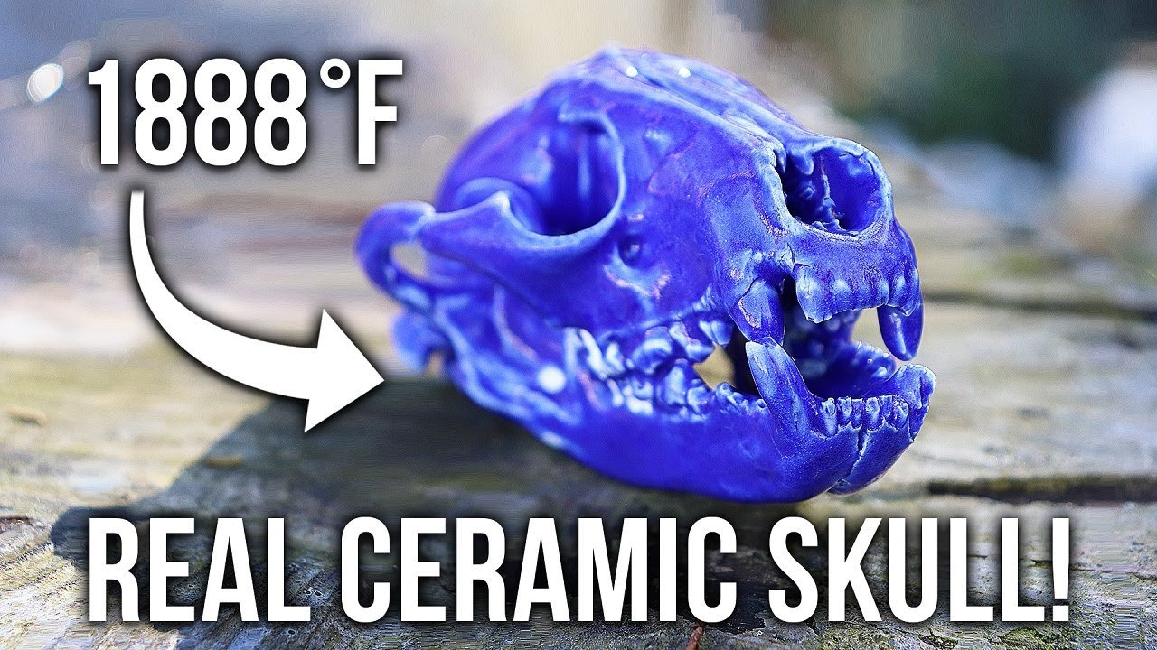Making A REAL Ceramic Raccoon SKULL!
