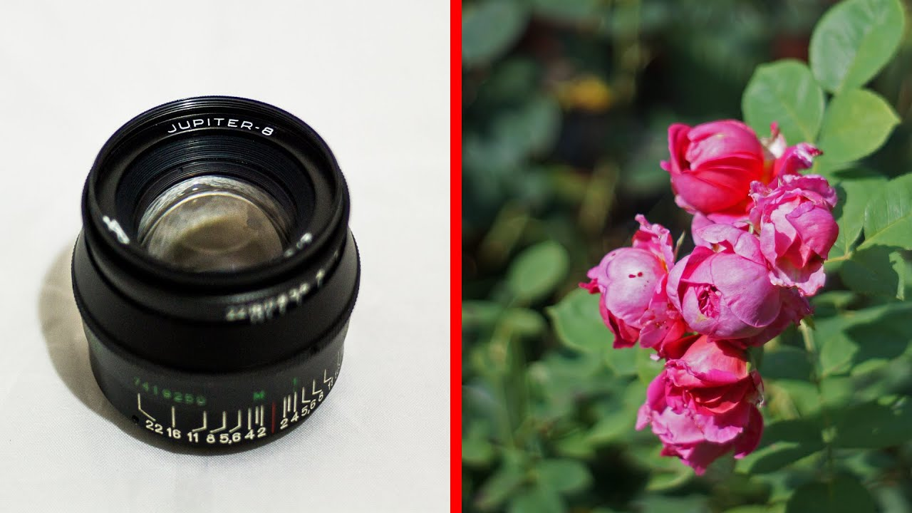 the legendary Russian Jupiter 8 50mm f2 lens for Leica Camera