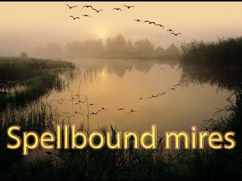Spellbound mires