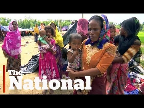 'Ethnic cleansing' of Rohingya Muslims: Chrystia Freeland