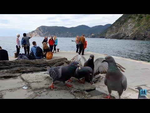 cinque-terre,-desa-nelayan-yang-indah-di-italia---wisata-eropa---jalan2yuuk