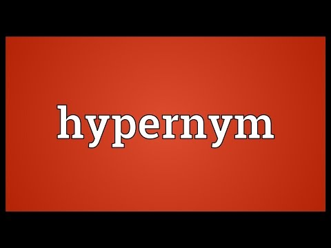 Hypernym Meaning