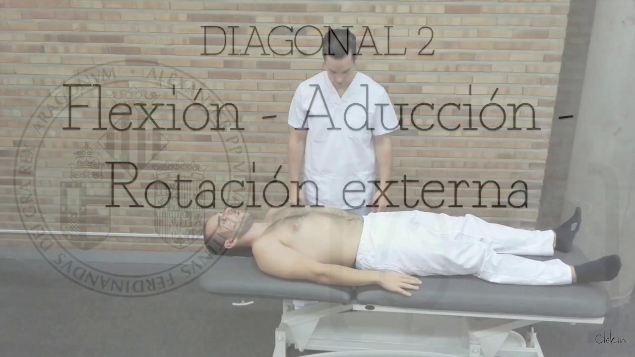 Download Facilitación Neuromuscular Propioceptiva - UV