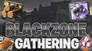 How To Effectively Gather In Black Zone! | Albion Online (2019)