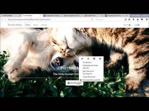 Project: Responsive website making  bootstrap Part 15