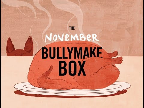 bullymake-box-nov-2017-unboxing-and-review/-coupon-code