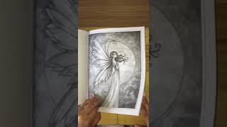 the enchanted fairy grayscale book by molly harrison flip through