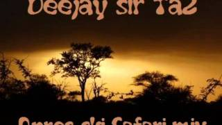 Deejay Sir Ta2 - Apres-ski safari Mix