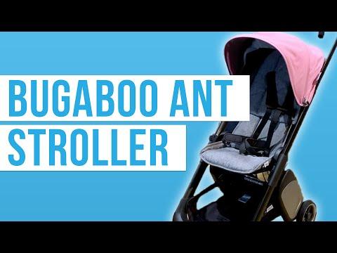 Bugaboo Ant 2019   Travel Stroller   Full Review!