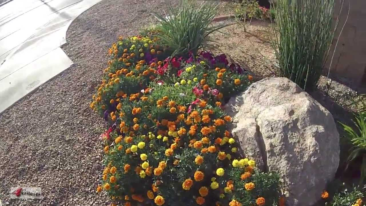 marigolds home business