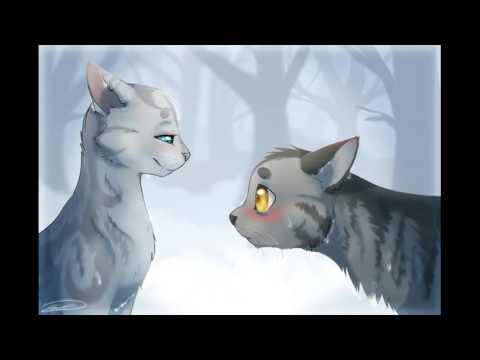 картинки коты воители серебрянка и крутобок
