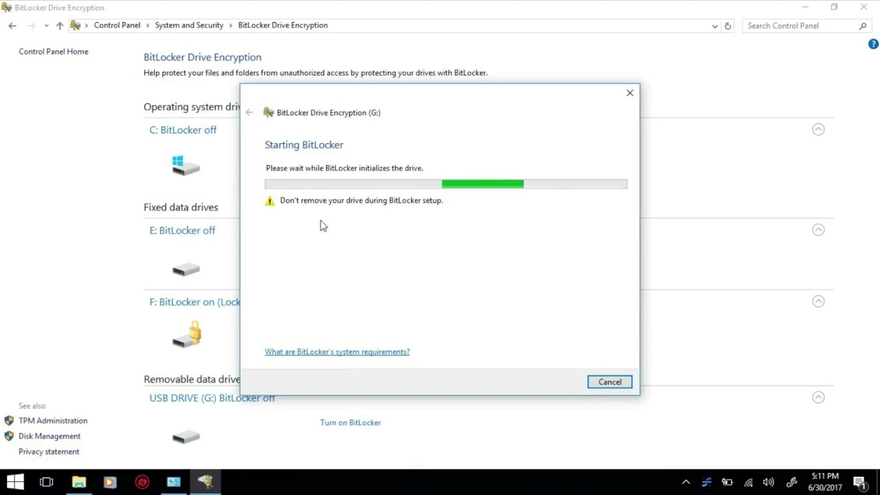 Password protect Pen drive or PC drives without software installation