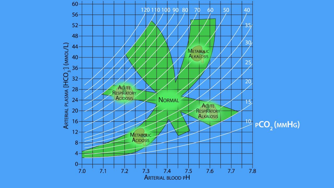 AcidBase Regulation: The Davenport Diagram  YouTube