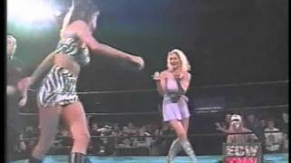 SUNNY vs FRANCINE (ECW CATFIGHT!!!)