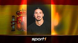 Ibrahimovic kündigt Spanien-Rückkehr an   SPORT1 - TRANSFERMARKT