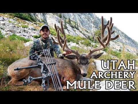 2018 Utah Archery Mule Deer - Life Of Prospect