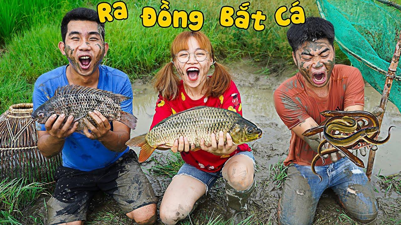 Hà Sam Đi Bắt Cá Ngoài Đồng - Ai Bắt Được Nhiều Cá Nhất ? Catch Fish With Hand