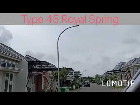 Royal Apring Type 45 -082259299597