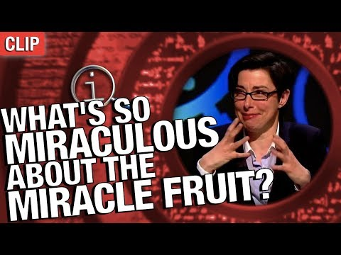QI | What's So Miraculous About The Miracle Fruit?