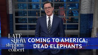 connectYoutube - Trump Reverses Obama's 'Elephant Trophy' Policy