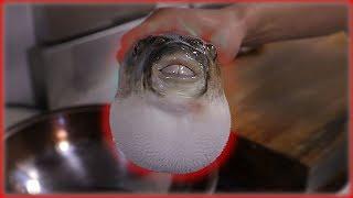 복어 손질 하기🐡(독 제거, 죽어서도 움직임.. 벌떡벌떡) with 우미노사찌 How to prepare Blowfish [ENG SUB]