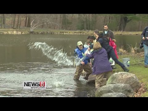 Opening Day for trout fishing begins on Saturday