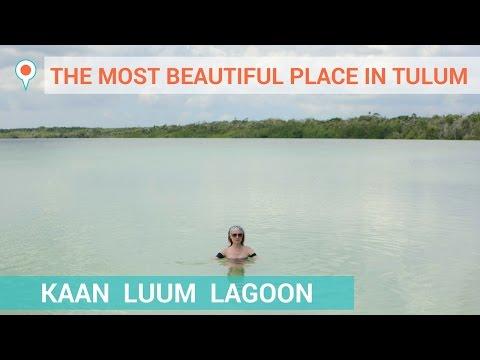 The Most Beautiful Place in Tulum :: Kaan Luum Lagoon